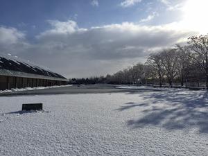 美術館雪景色