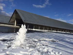 雪の彫刻出現 !?