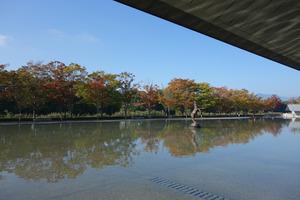 秋の佐川美術館