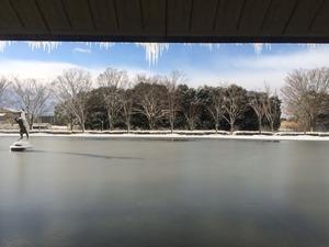 凍った水庭