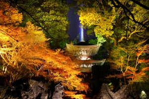 夜の石山寺